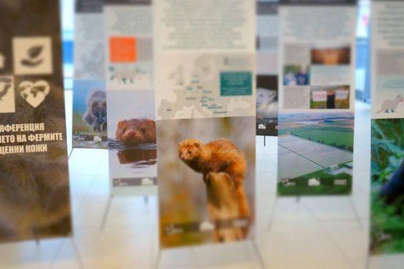Банери, Конференция: Влиянието на Фермите за Ценни Кожи