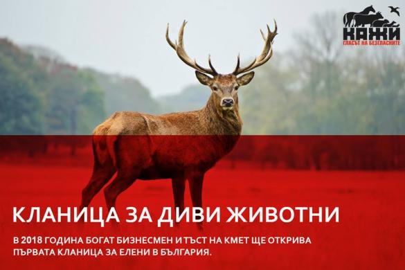 Кланица за елени се подготвя в България