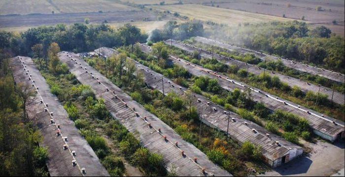 Част от халетата на фермата за ценни кожи до с. Маджерито. Според БАБХ там се отглеждат близо 130 хиляди норки. Близо 100 хиляди свършват в газови камери всеки ноември.