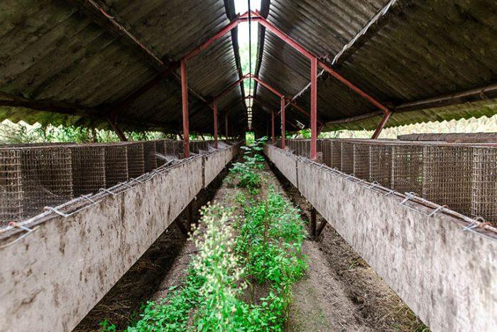 Ферма за кожи в Полша – една от стотиците, затворили през последните години. (Снимка: Konrad Łoziński)