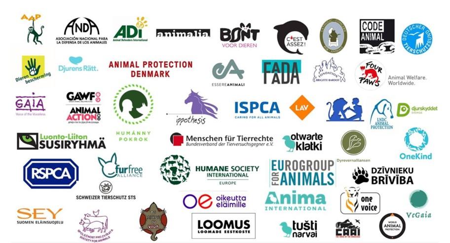 49 организации призоваваме ЕС да спре развъждането на норки