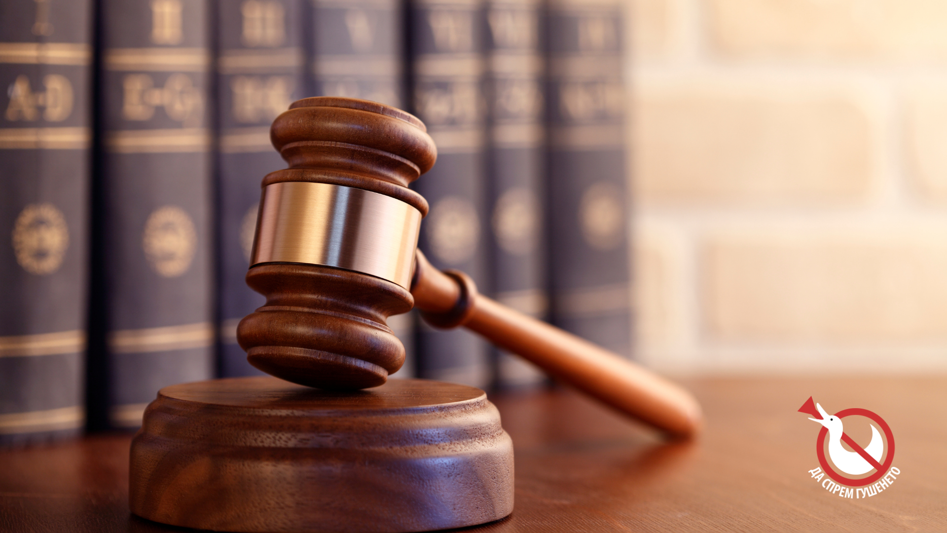 Работна позиция: Правен координатор по Законодателна кампания към КАЖИ